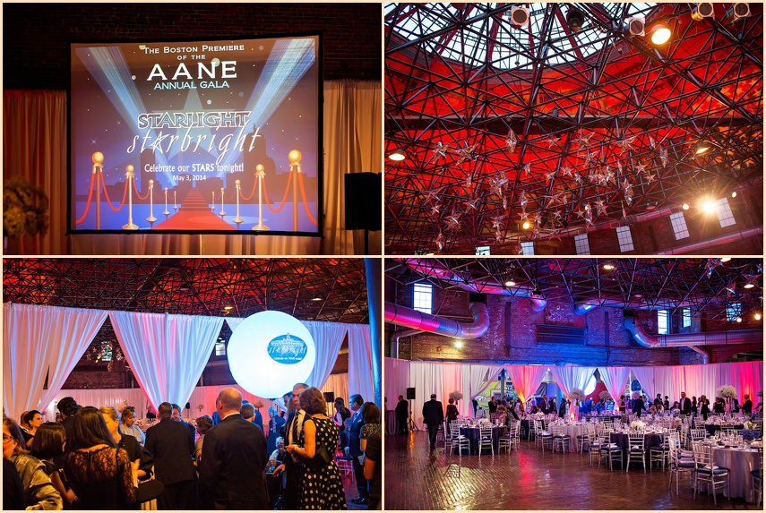 AANE 2014 Event Charity Gala