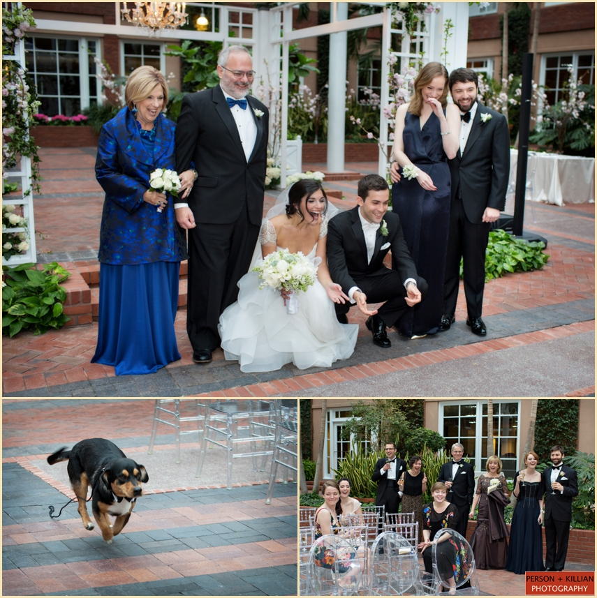 Candid Wedding Family Portraits with Family Dogs by Person + Killian Photography