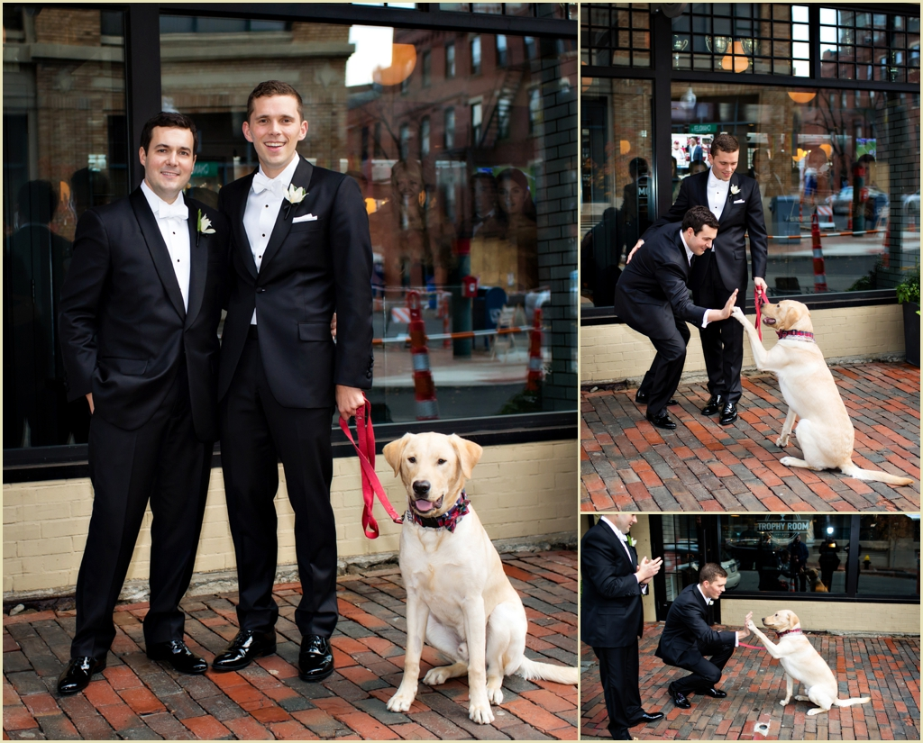 two-grooms-one-lab-south-boston-wedding