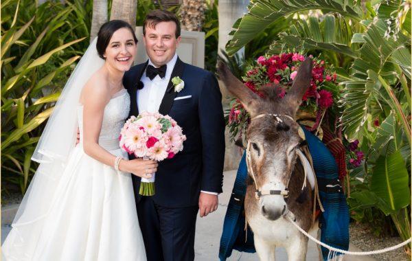 Luxury Destination Wedding in Cabo San Lucas